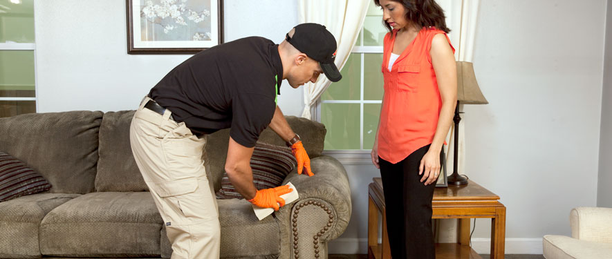 Selma, AL carpet upholstery cleaning